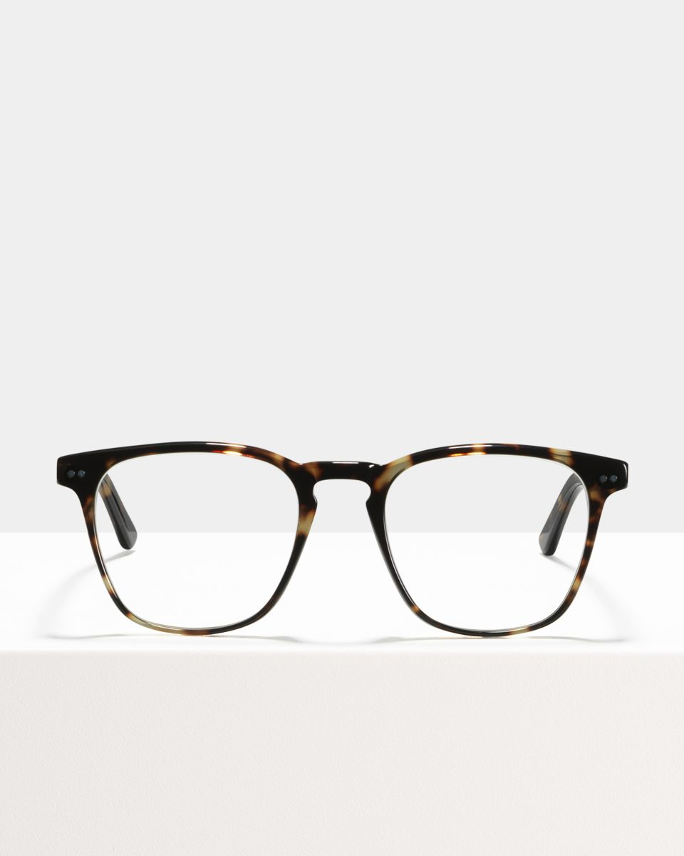 Hudson quadratisch Acetat glasses in Sugar Man by Ace & Tate