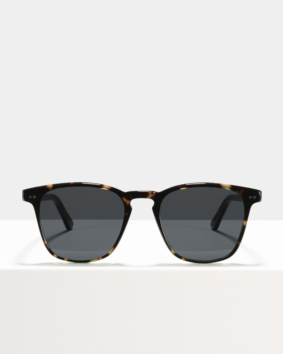 Hudson square acetate glasses in Sugar Man by Ace & Tate