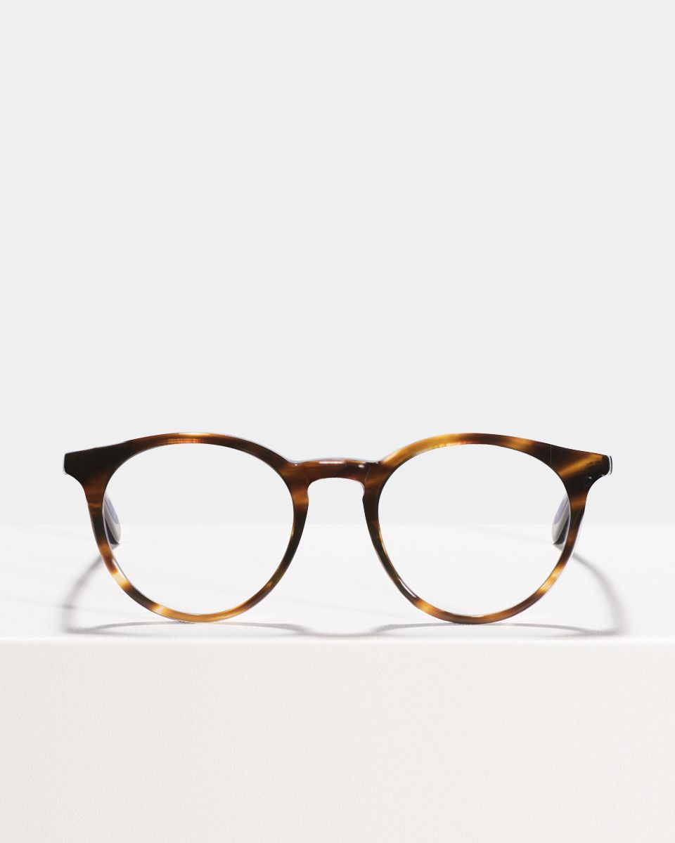 Easton round acetate glasses in Tiger Wood by Ace & Tate