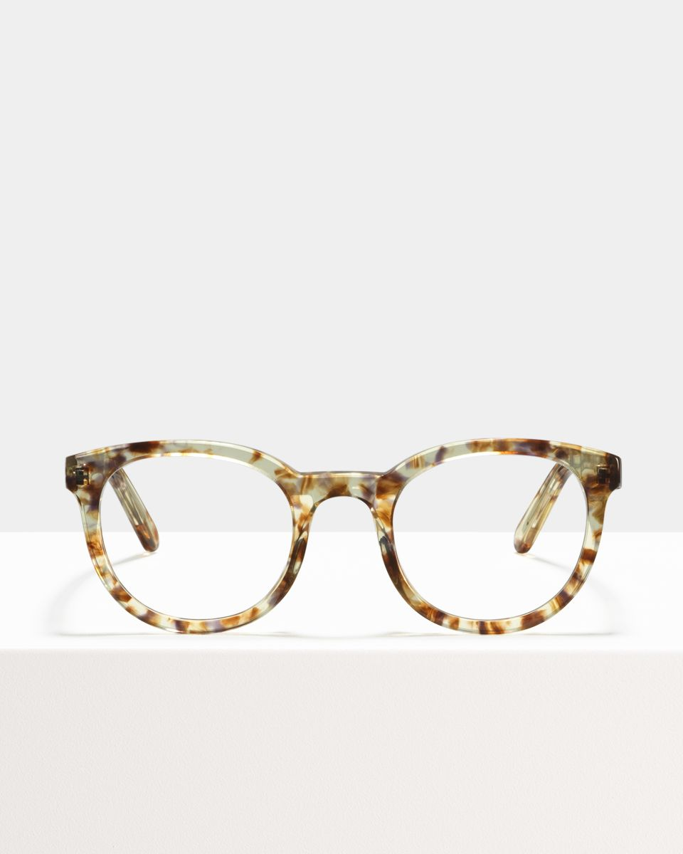 Hugo round acetate glasses in Gold Dust by Ace & Tate