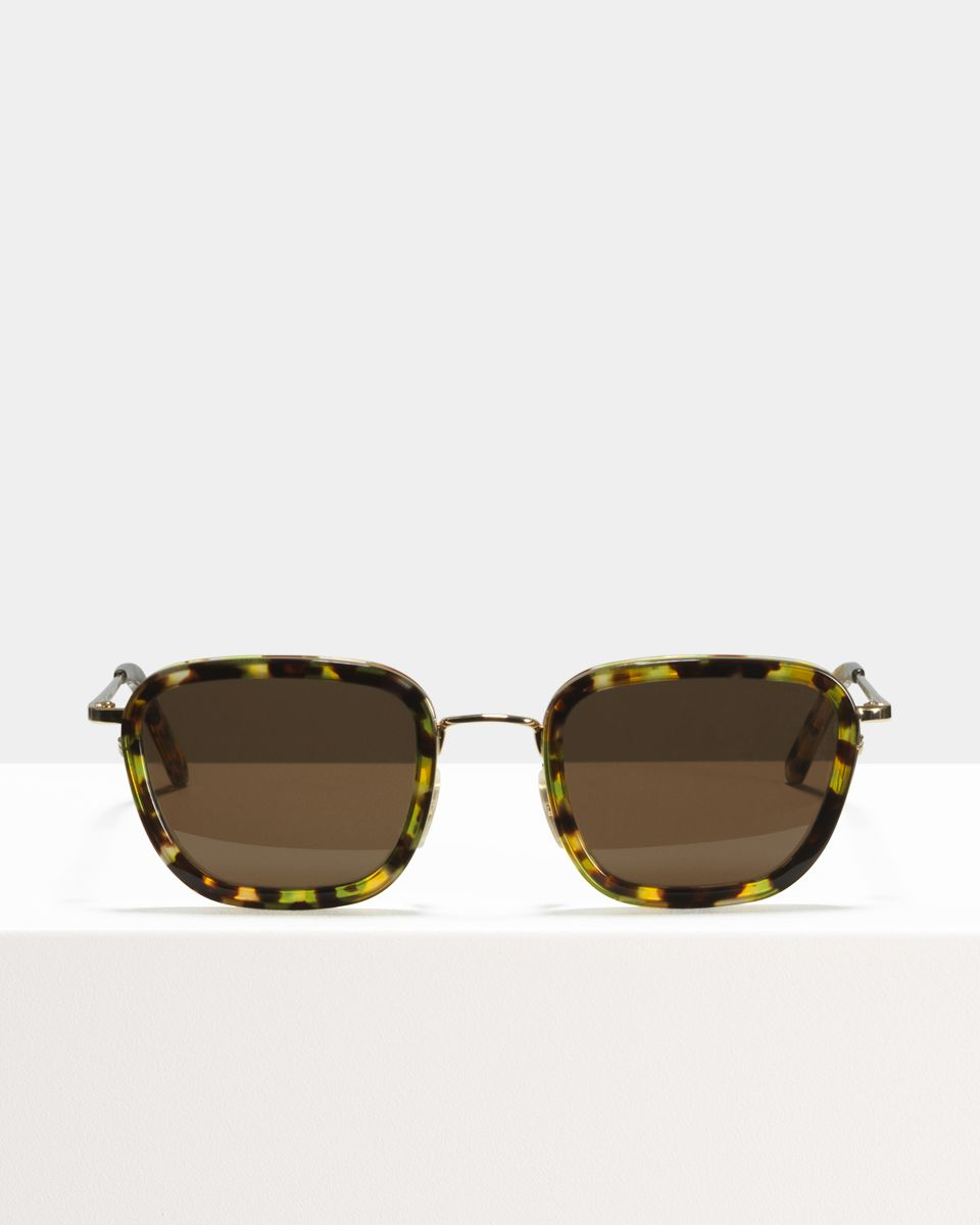 Ringo square combi glasses in Chameleon by Ace & Tate