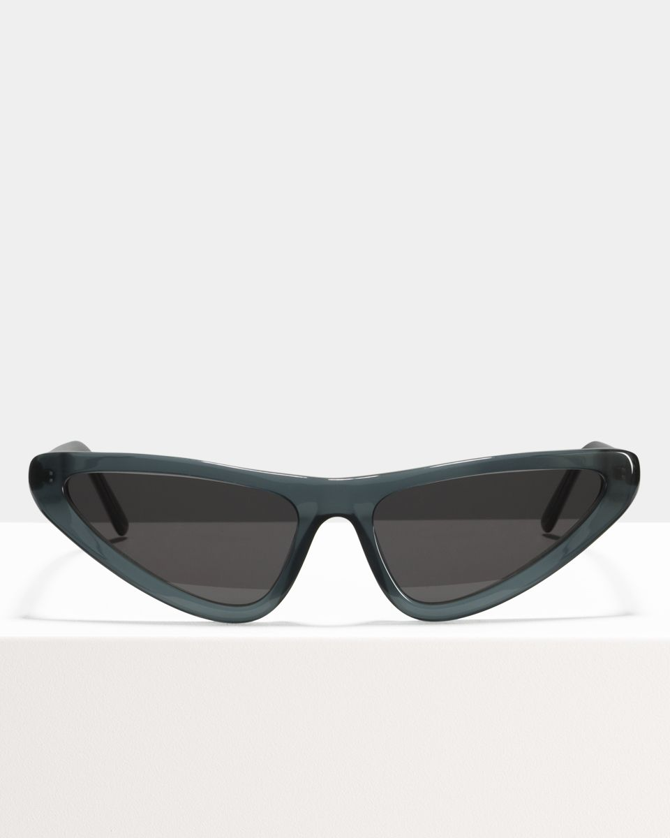 Roxy other acetaat glasses in Gunmetal Transparent by Ace & Tate