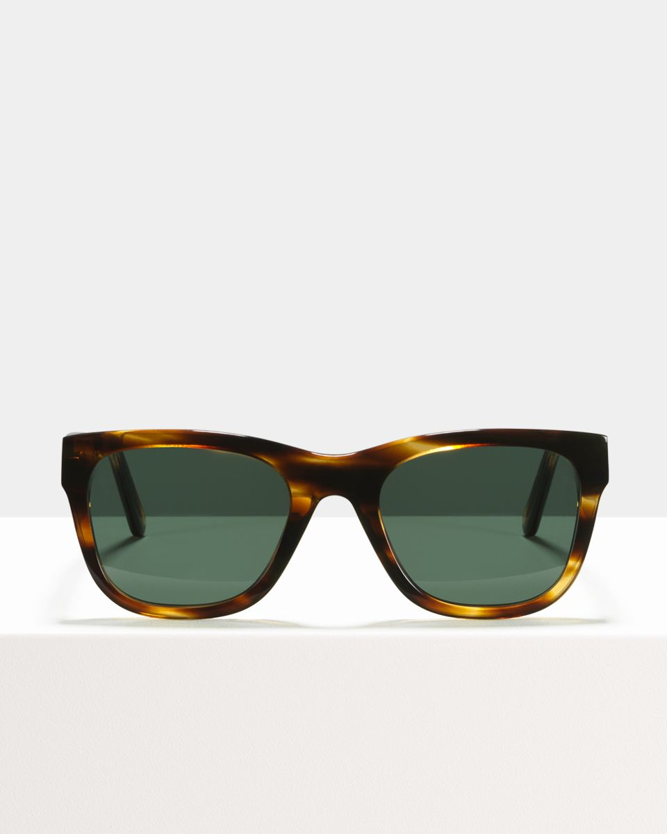 Clay rectangle acetate glasses in Tiger Wood by Ace & Tate