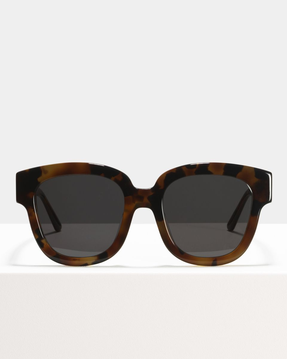 Harper square acetate glasses in On The Rocks by Ace & Tate