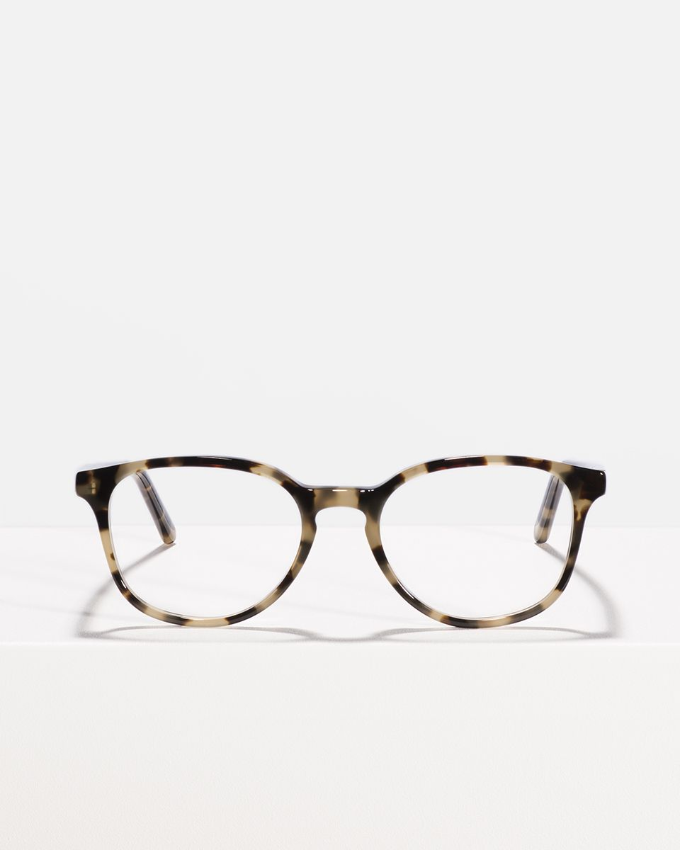 Ryan rund Acetat glasses in Autumn Leaves by Ace & Tate