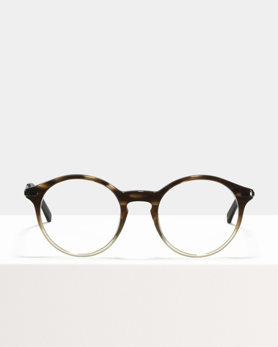 Monty Metal Temple acetate glasses in Espresso Gradient by Ace & Tate