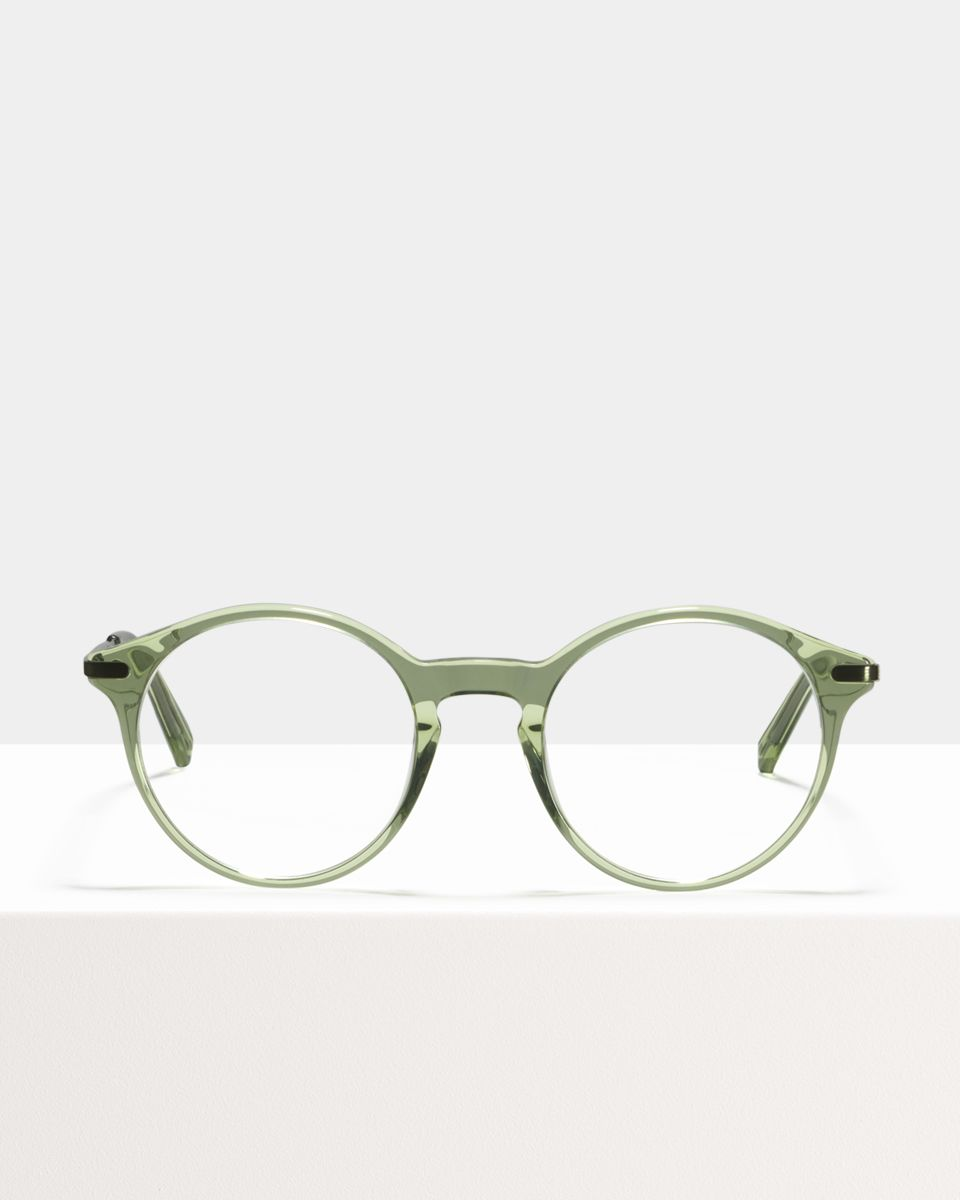 Monty Metal Temple acetate glasses in Sage by Ace & Tate