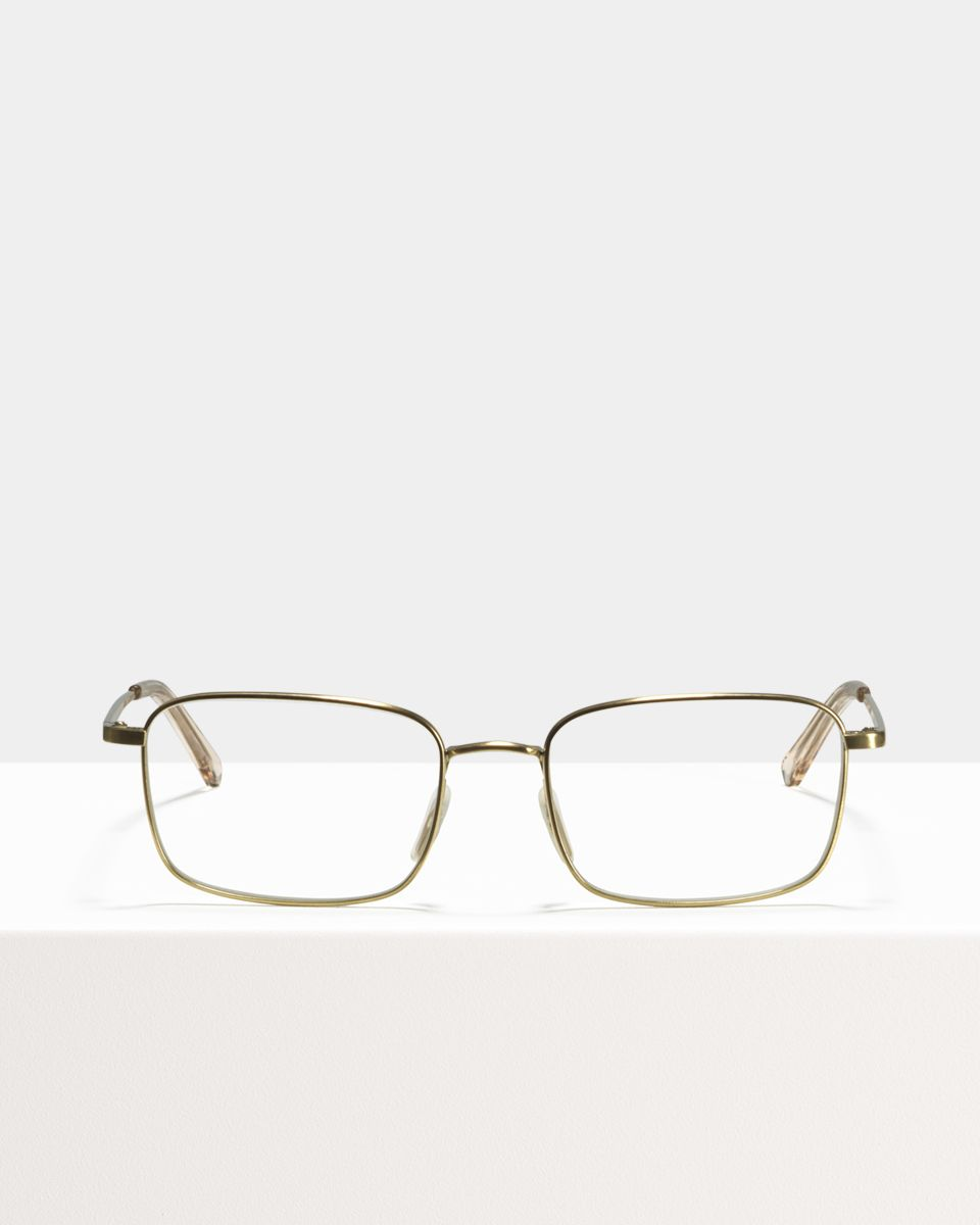 Tony Titanium titanium glasses in Satin Gold by Ace & Tate