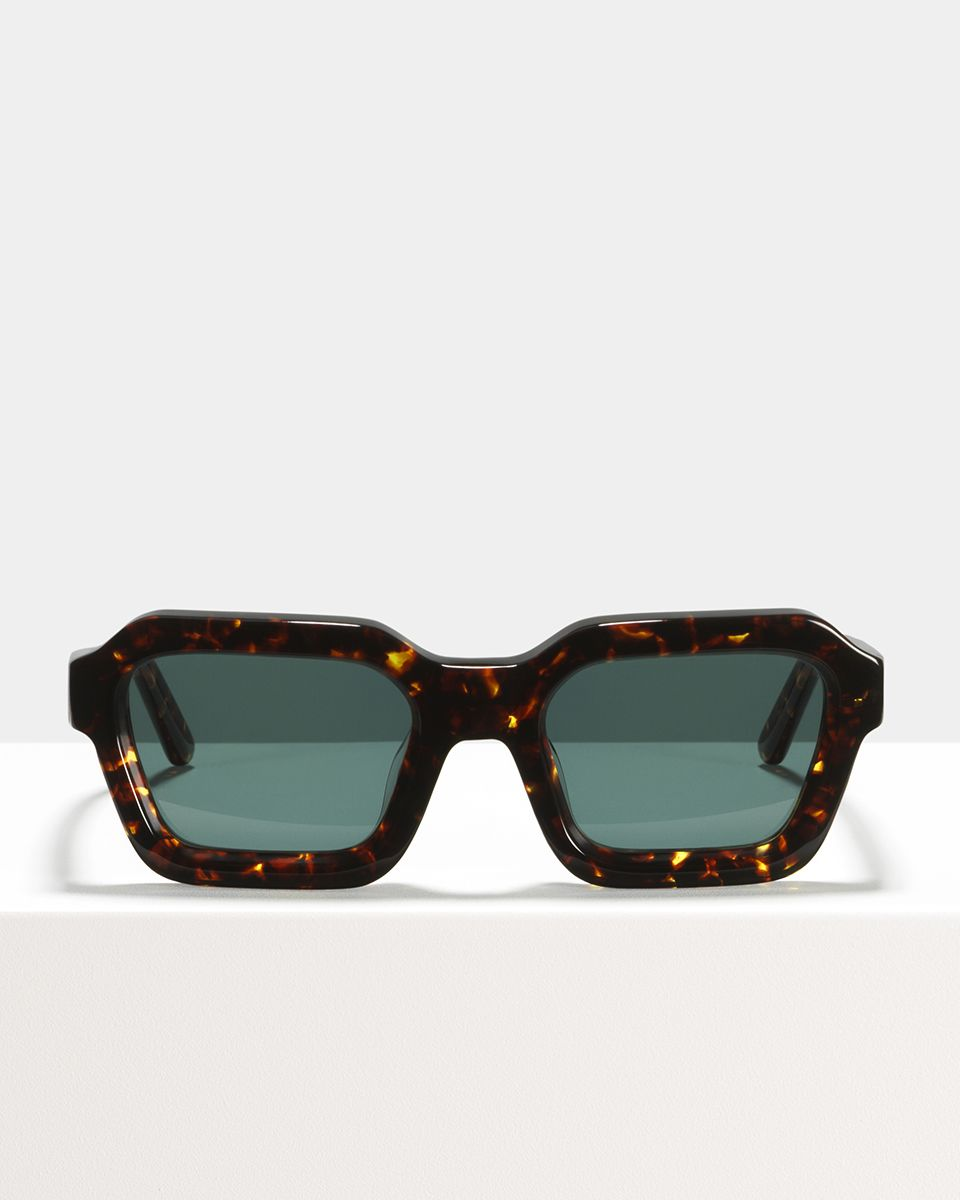 Morgan acetate glasses in Chestnut Tortoise by Ace & Tate