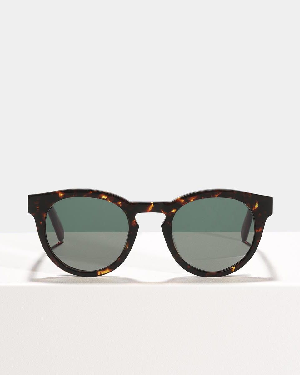 Byron acetate glasses in Chestnut Tortoise by Ace & Tate