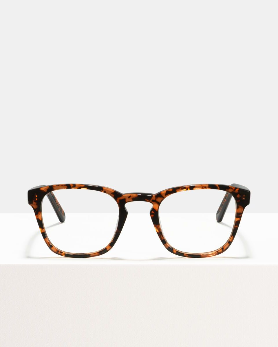 Axl acetaat glasses in Freckles by Ace & Tate