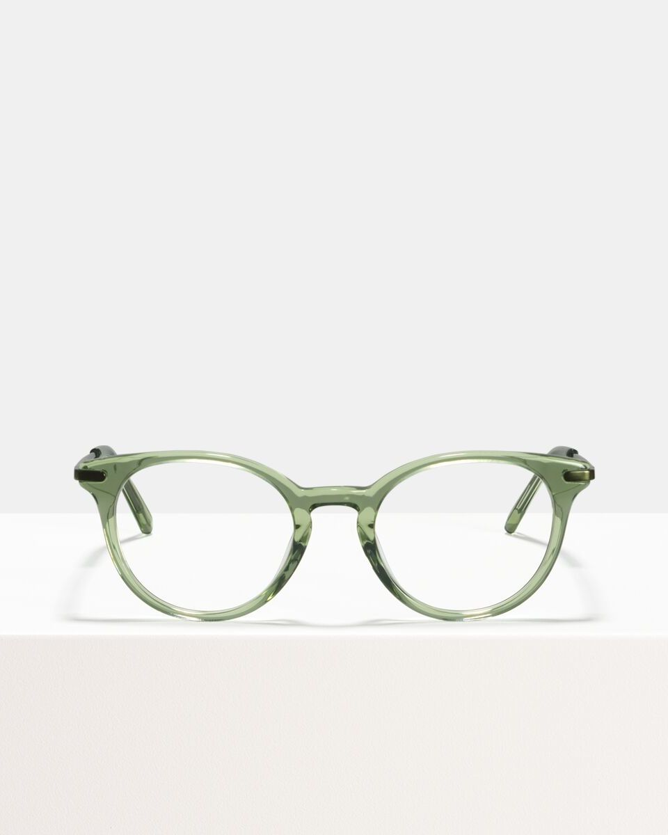 Max Metal Temple Acetat glasses in Sage by Ace & Tate