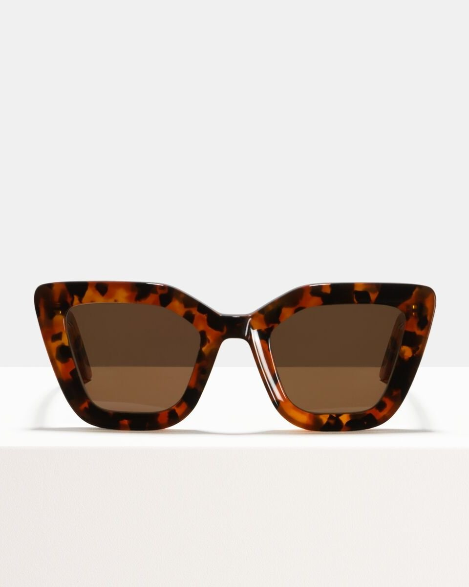 Bella acetaat glasses in Eye Of The Tiger by Ace & Tate