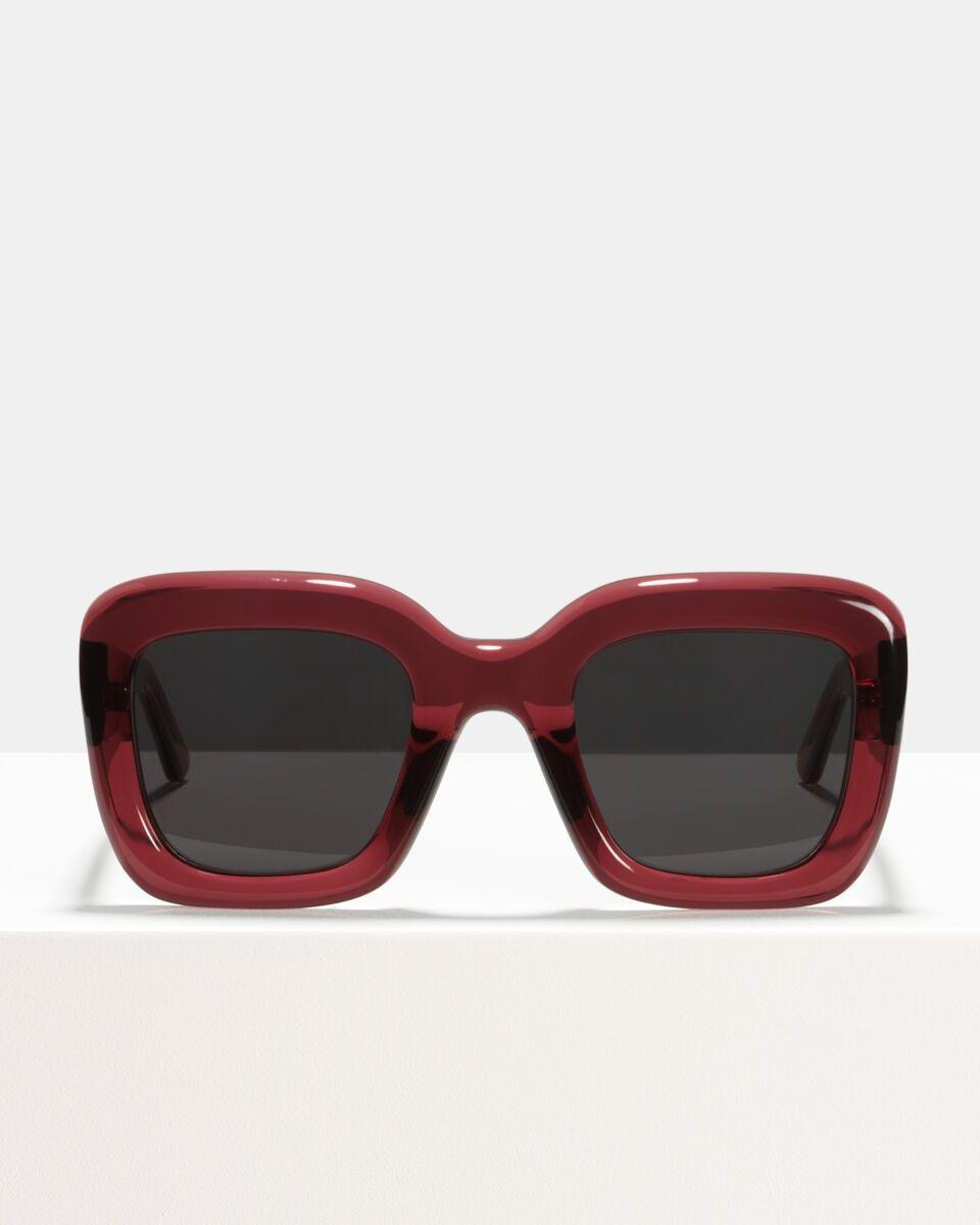 Brigitte acetate glasses in Red Velvet by Ace & Tate