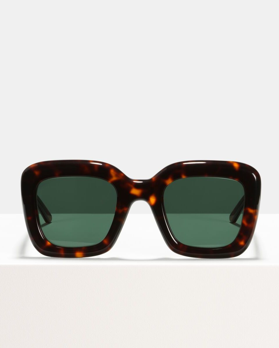 Brigitte acetate glasses in Hazelnut Tortoise by Ace & Tate