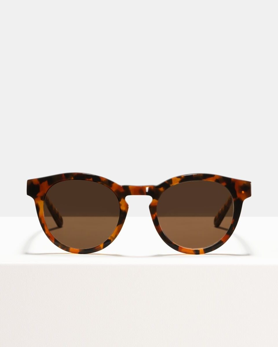 Byron Acetat glasses in Eye Of The Tiger by Ace & Tate