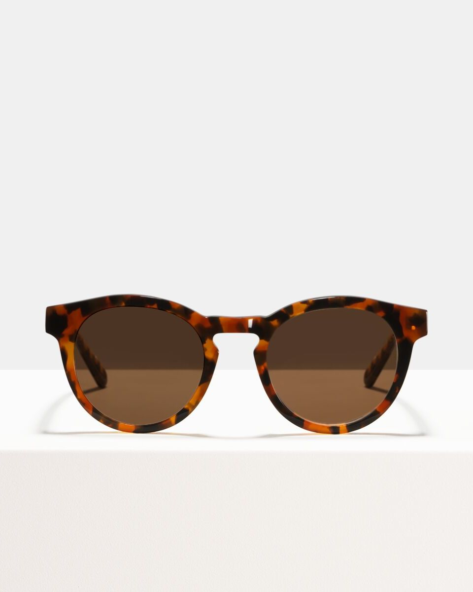 Byron acetato glasses in Eye Of The Tiger by Ace & Tate