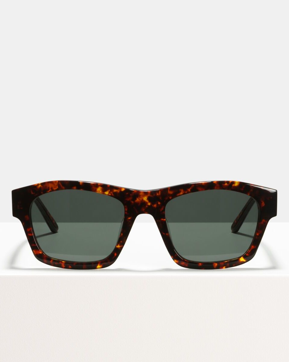 Leo acetate glasses in Chestnut Tortoise by Ace & Tate