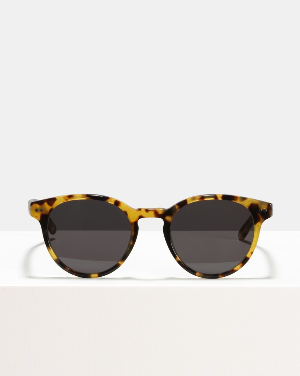 Pierce Large bio acetate glasses in Bananas by Ace & Tate