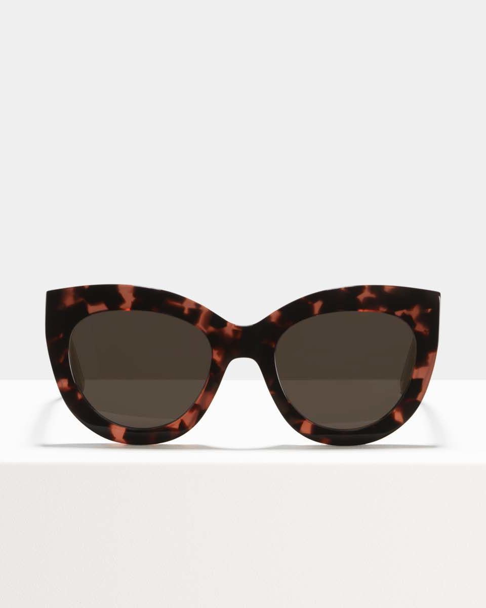 Vic bio acetate glasses in Black Ruby by Ace & Tate