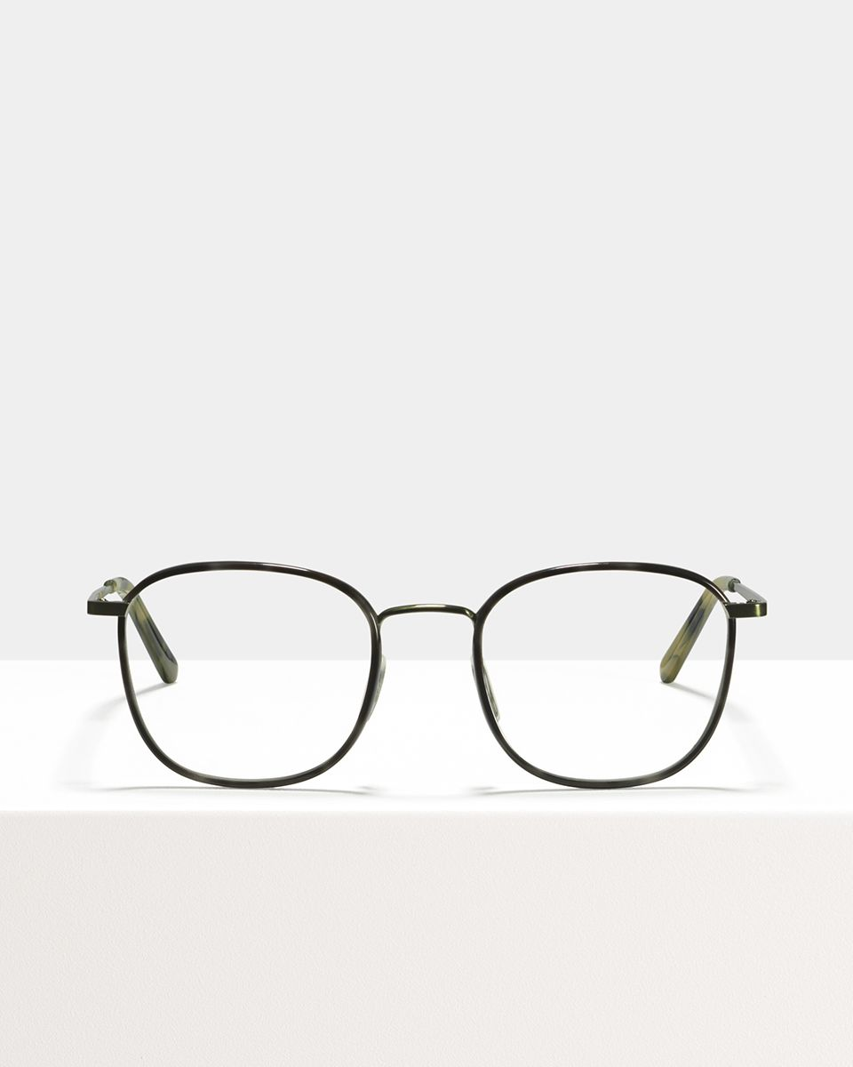 Jay Large metal glasses in Sage Botanical Haze by Ace & Tate