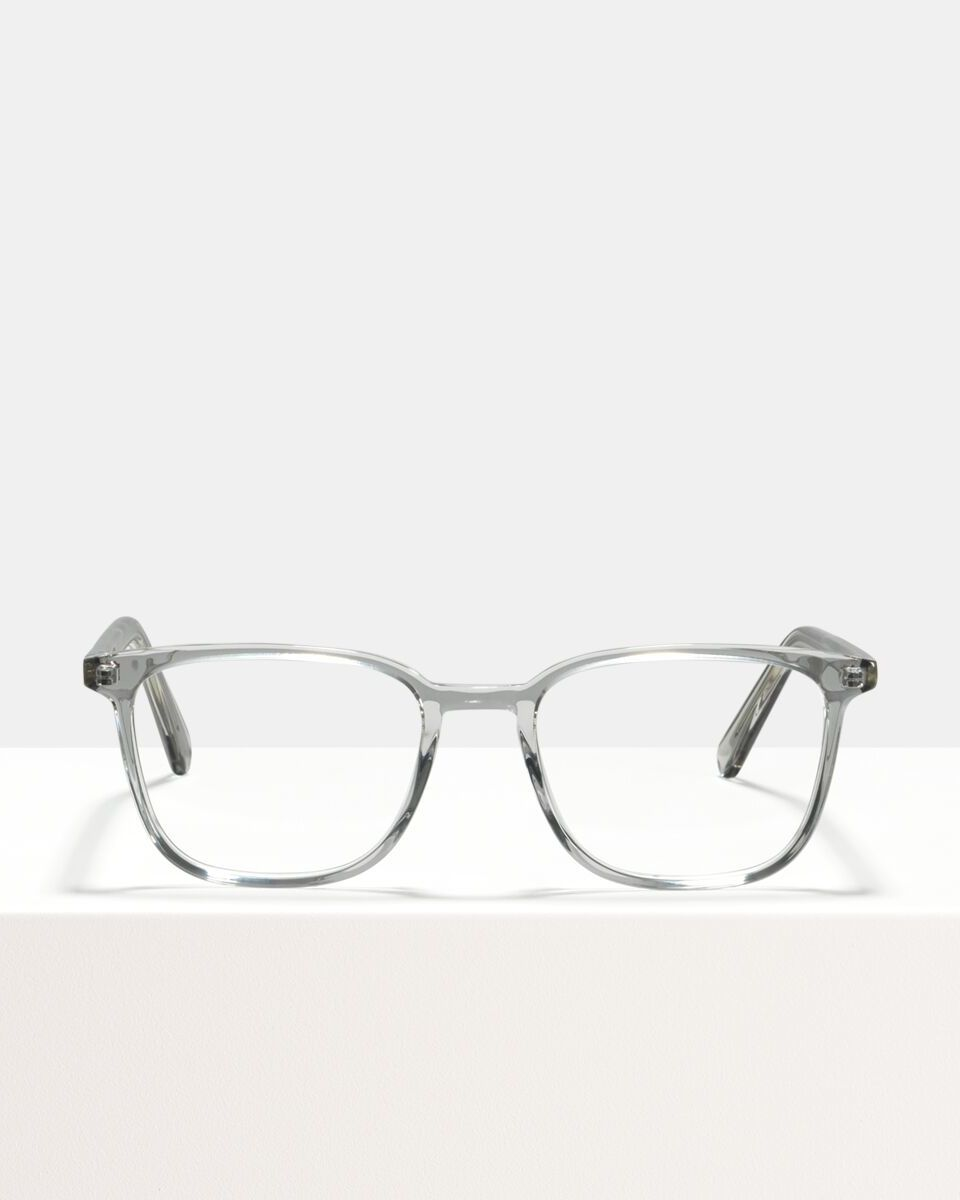 Nelson Acetat glasses in Smoke by Ace & Tate