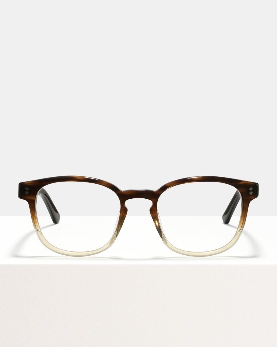 Alfred Large acetate glasses in Espresso Gradient by Ace & Tate