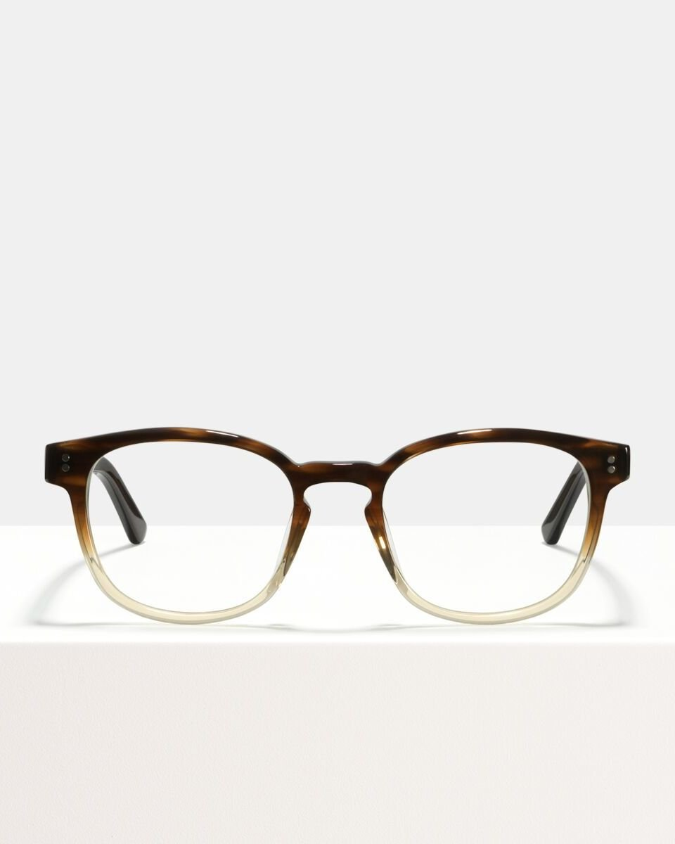 Alfred Large acetaat glasses in Espresso Gradient by Ace & Tate