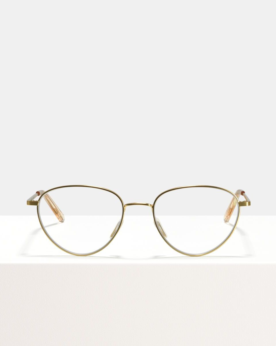 Isabelle métal glasses in Satin Gold by Ace & Tate