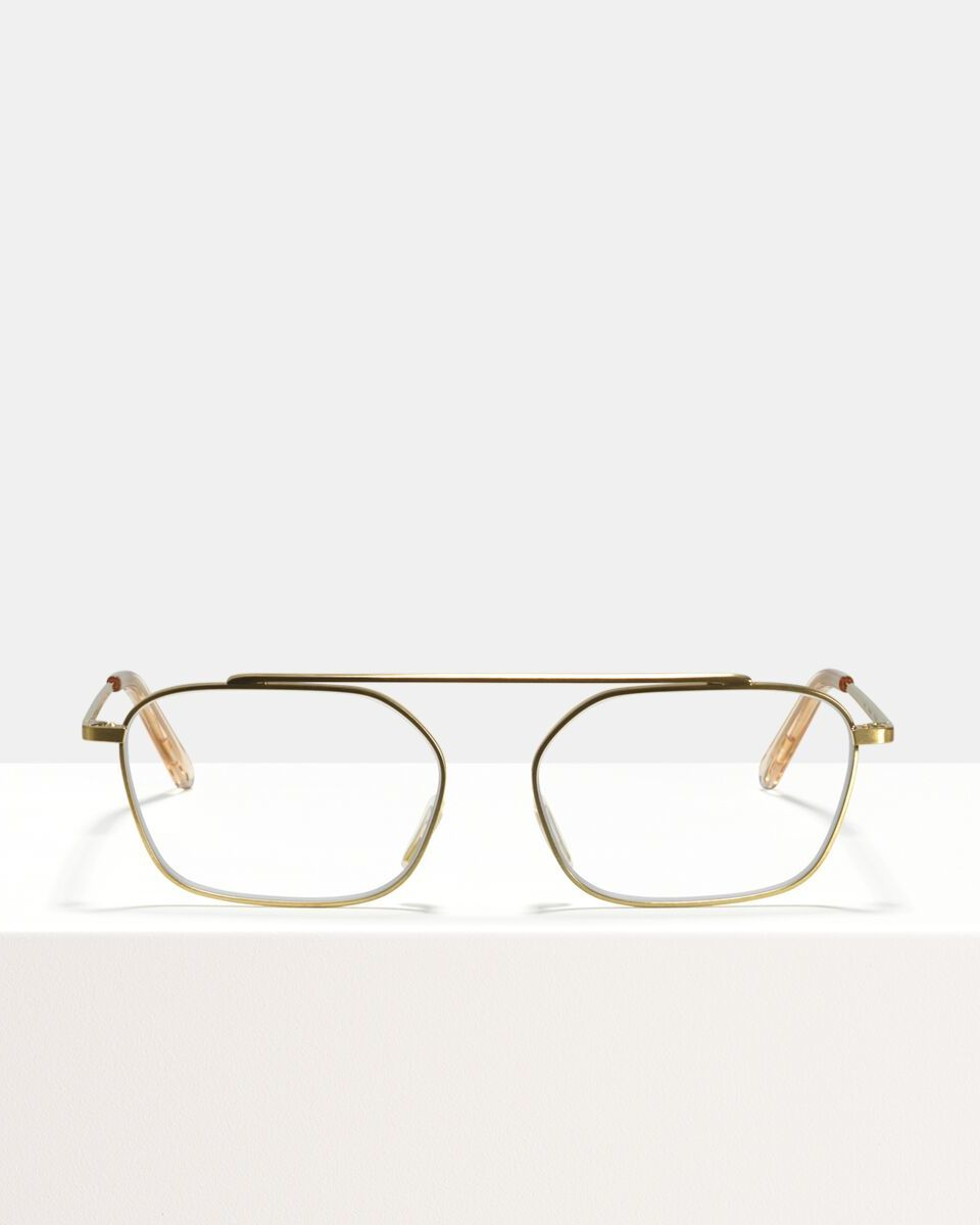 Yung metal glasses in Satin Gold by Ace & Tate