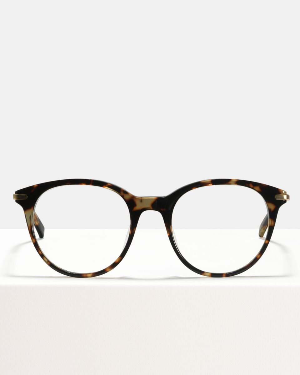Liz acetate glasses in Sugar Man by Ace & Tate