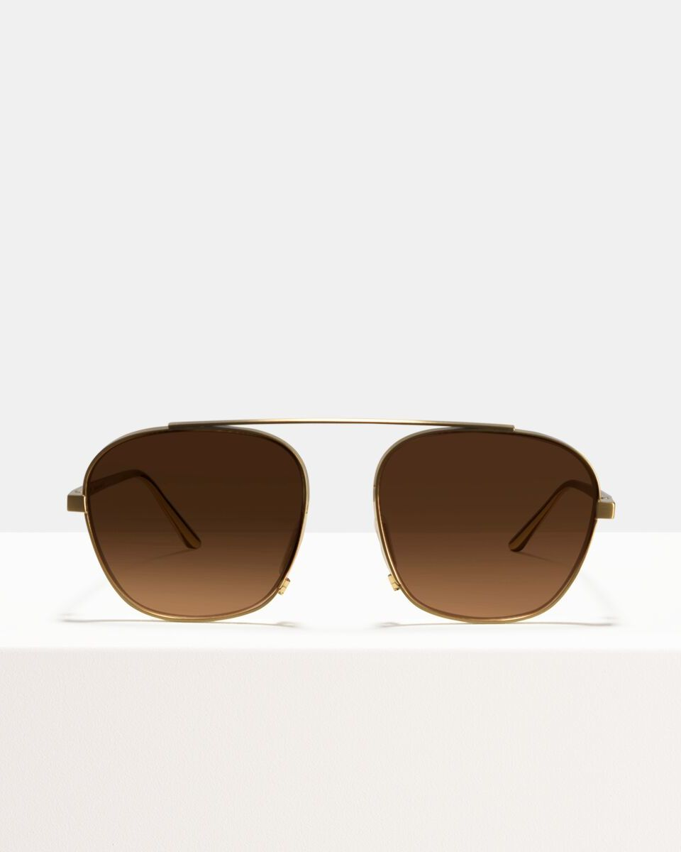 Tokio Titanium titanium glasses in Satin Gold by Ace & Tate