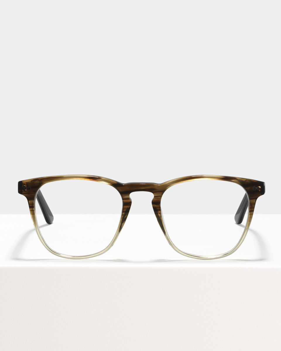 Hudson Acetat glasses in Espresso Gradient by Ace & Tate