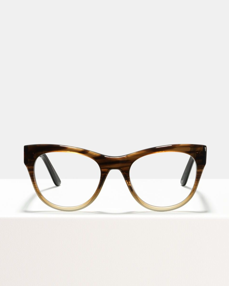 Amy Acetat glasses in Espresso Gradient by Ace & Tate