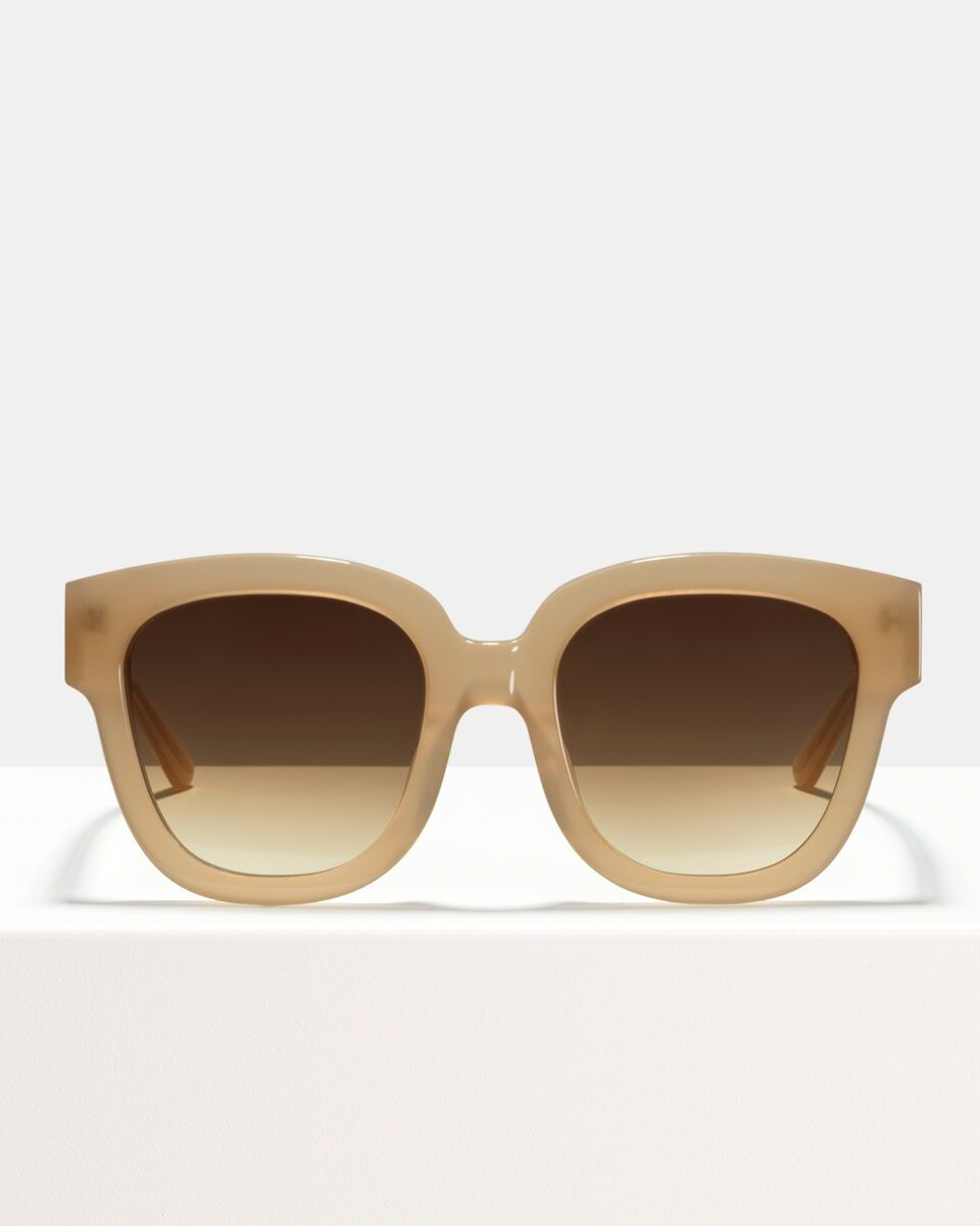 Harper Acetat glasses in Cashew by Ace & Tate