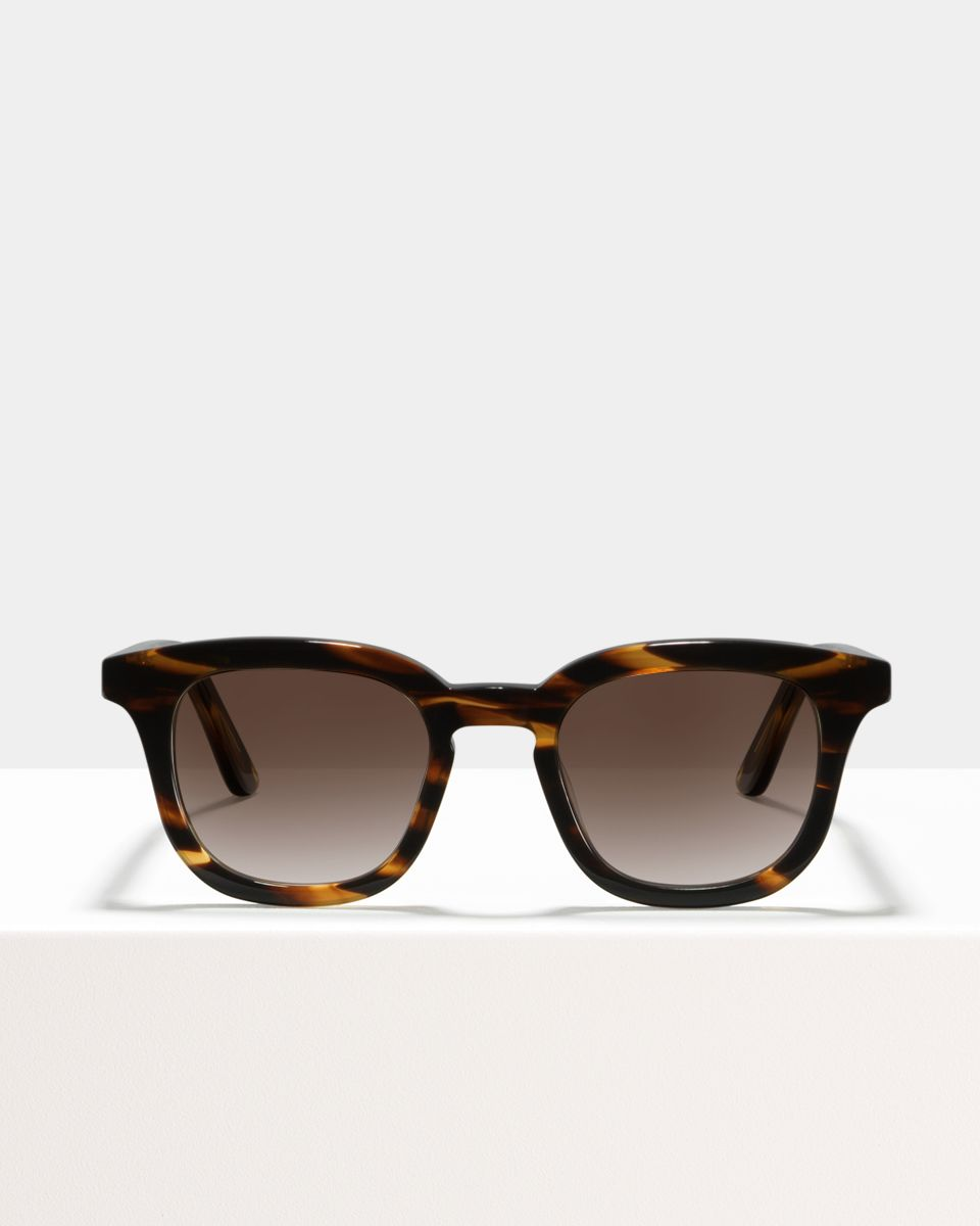 Bobby acetate glasses in Tigerwood by Ace & Tate