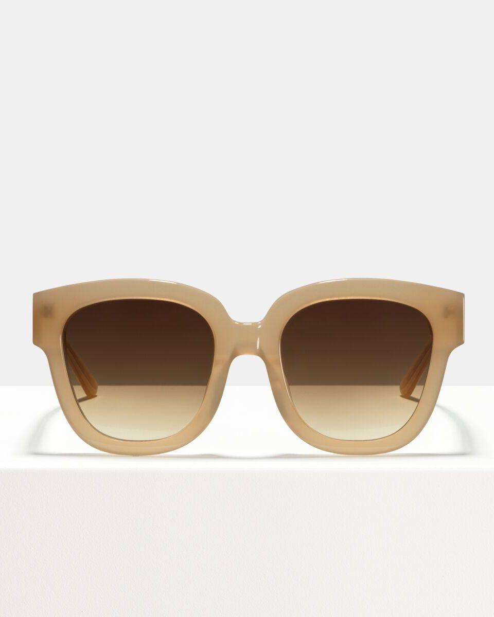 Harper Small acetate glasses in Cashew by Ace & Tate