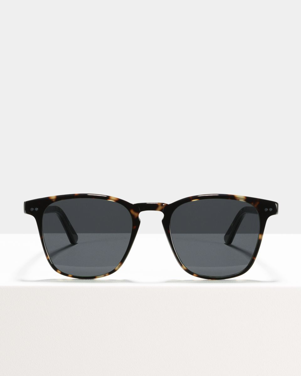 Hudson Large acetato glasses in Sugar Man by Ace & Tate