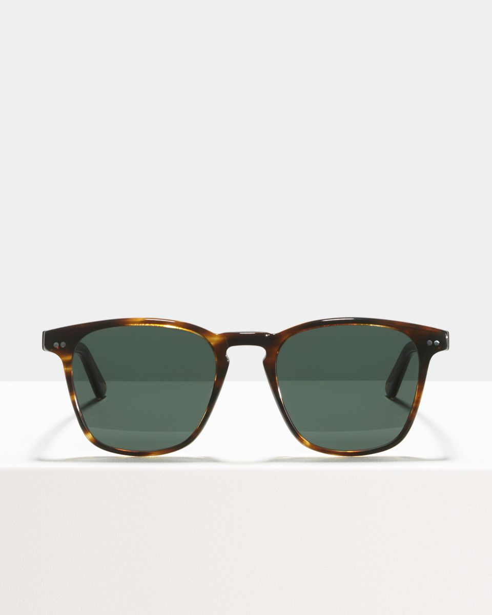 Hudson Large acetato glasses in Tigerwood by Ace & Tate