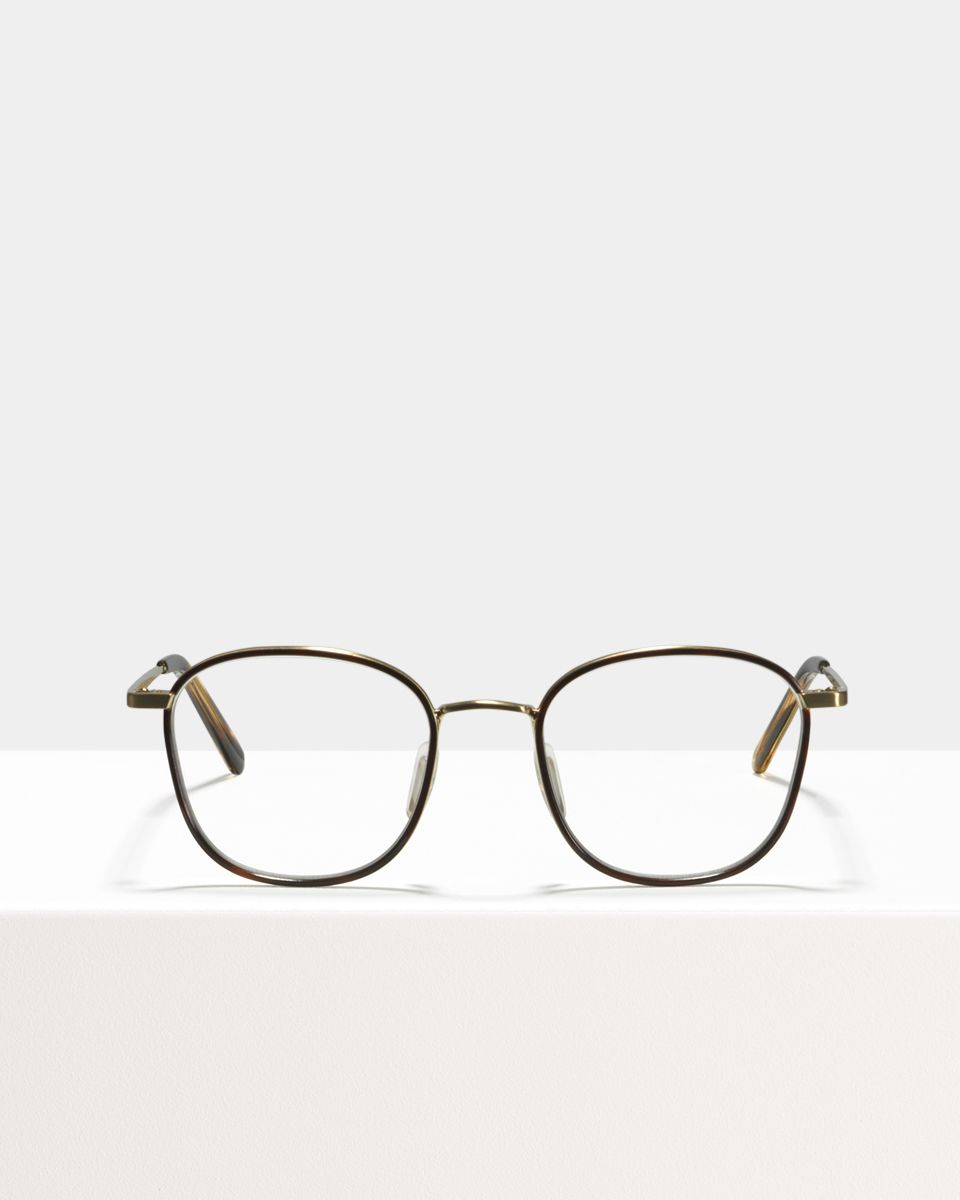 Jay Metall glasses in Windsor Rim Tigerwood by Ace & Tate