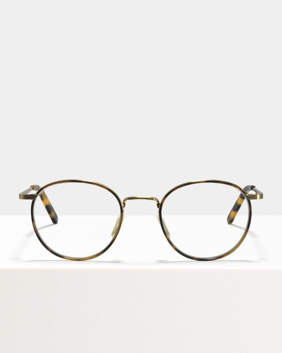 Neil Large acétate glasses in Windsor Rim Bananas by Ace & Tate