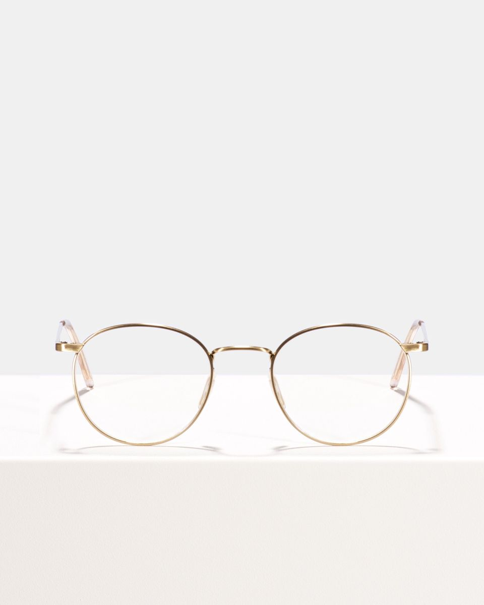 Neil Large Titanium metal glasses in Satin Gold by Ace & Tate