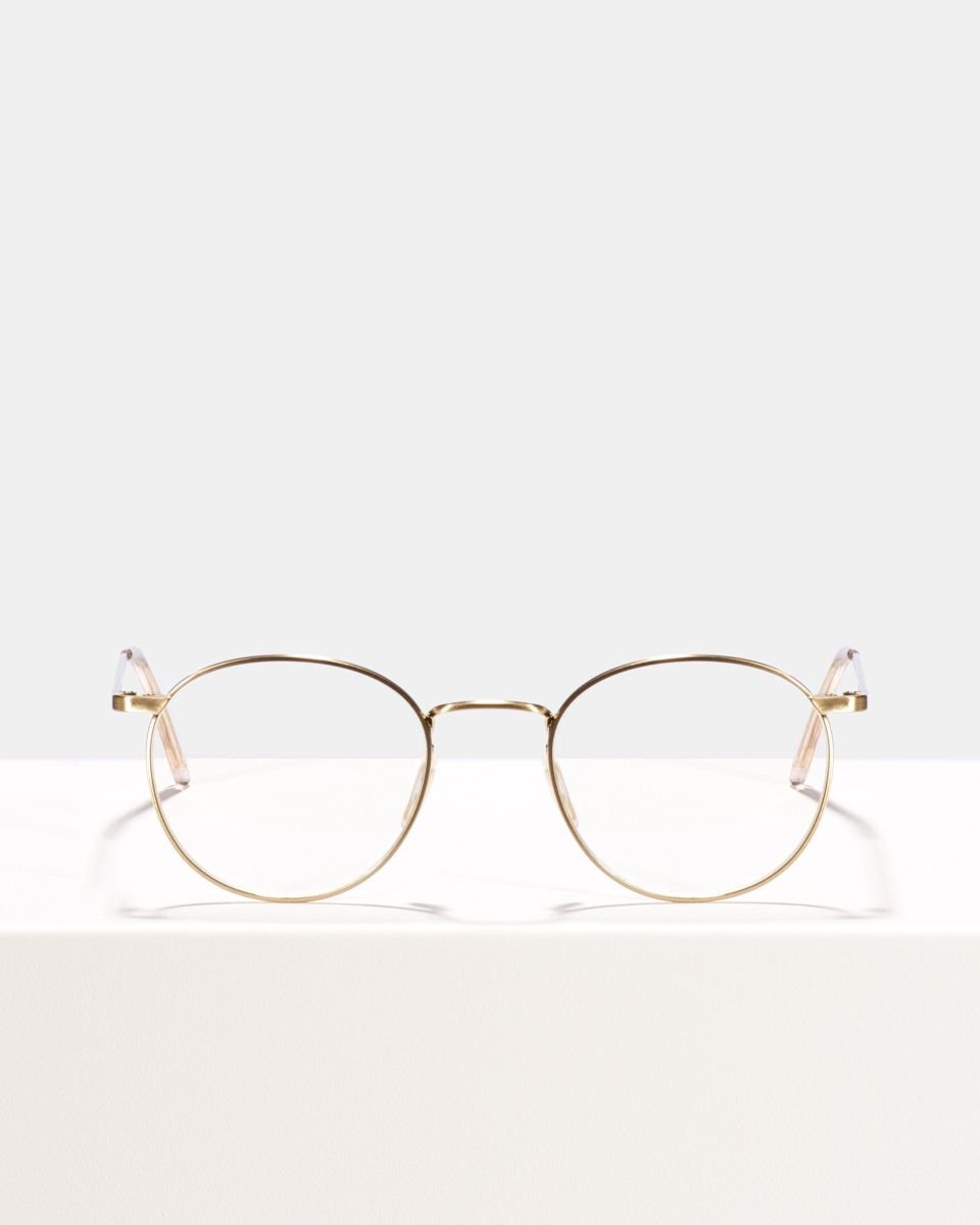 Neil Small Titanium titane glasses in Satin Gold by Ace & Tate