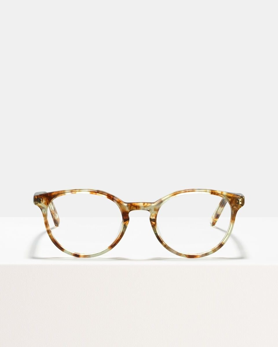 Max acetato glasses in Gold Dust by Ace & Tate