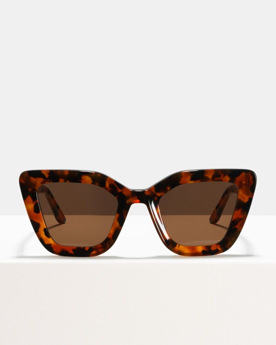 Bella acetate glasses in Coyote by Ace & Tate