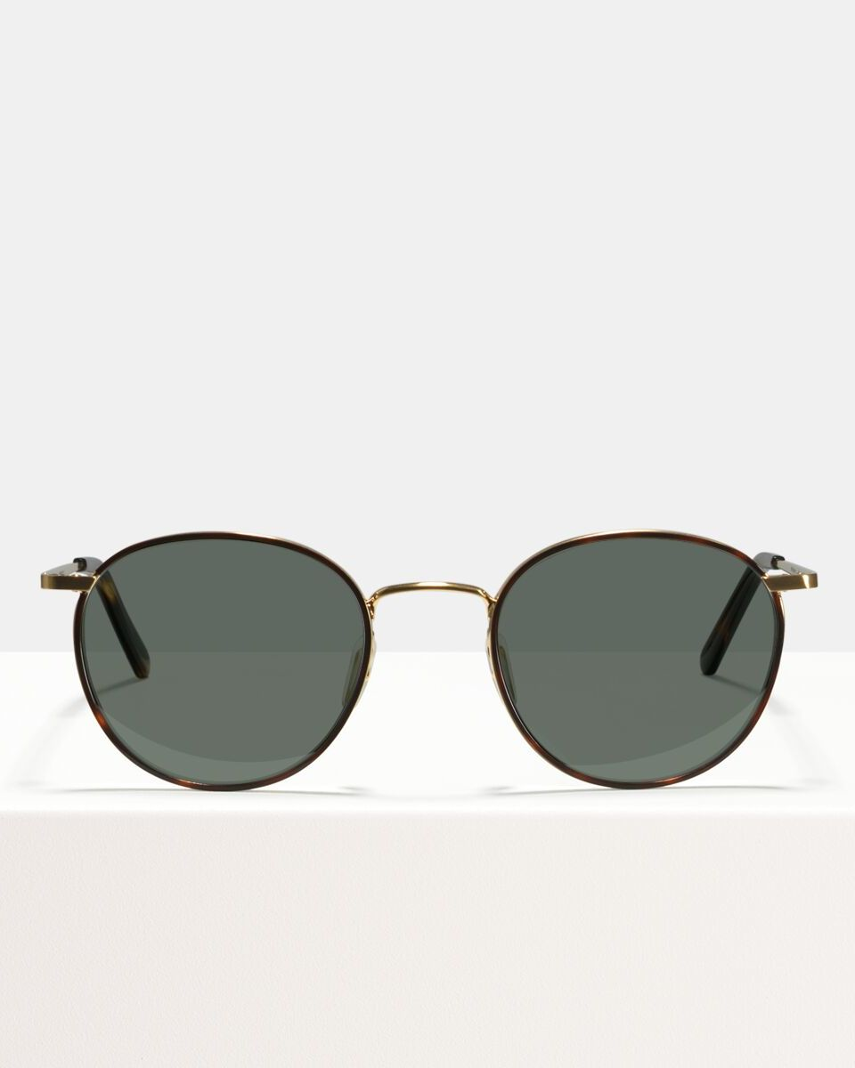 Neil Large metal glasses in Windsor Rim Tigerwood by Ace & Tate