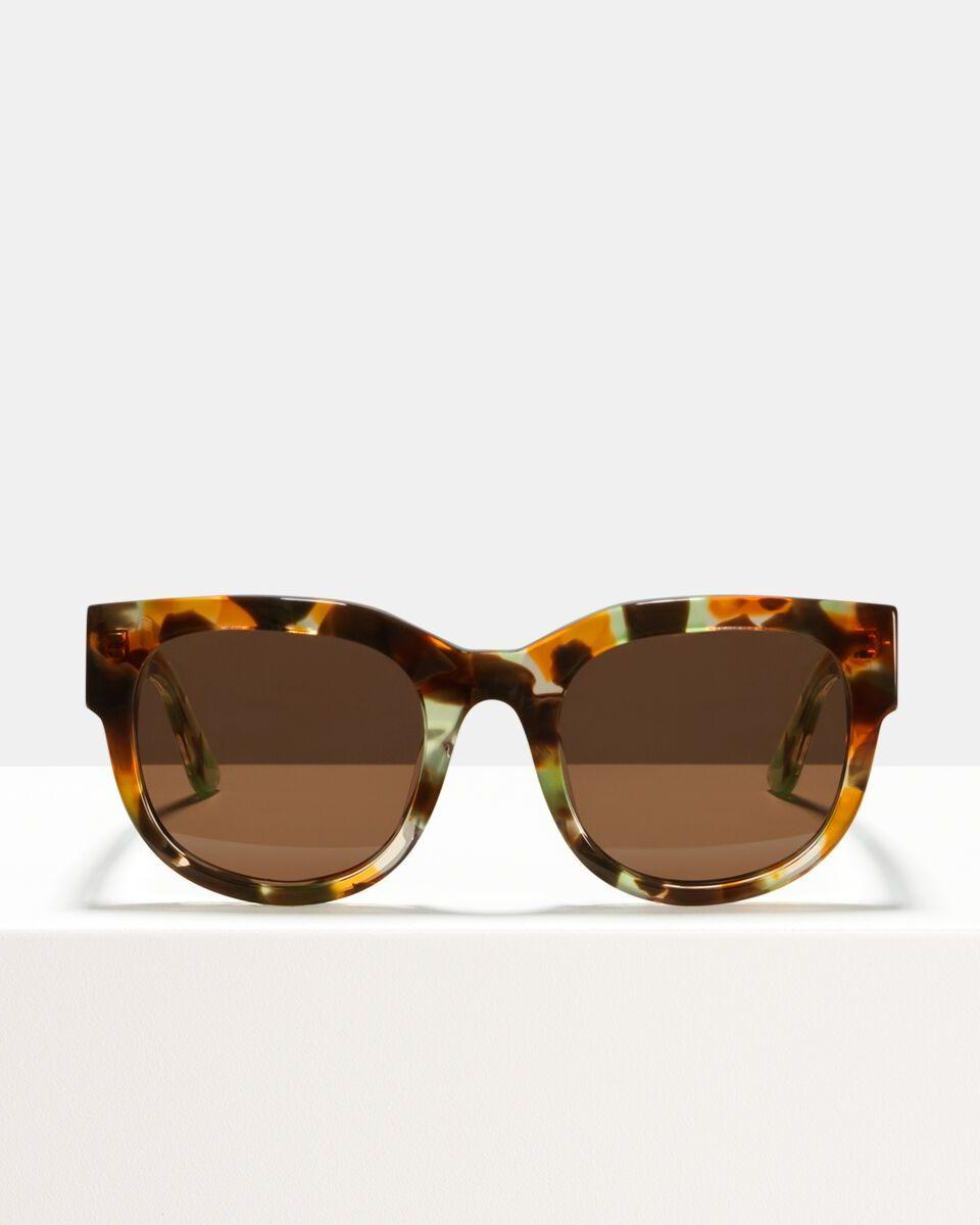 Ace & Tate Sunglasses | rund Acetat in Braun, Grün, Orange