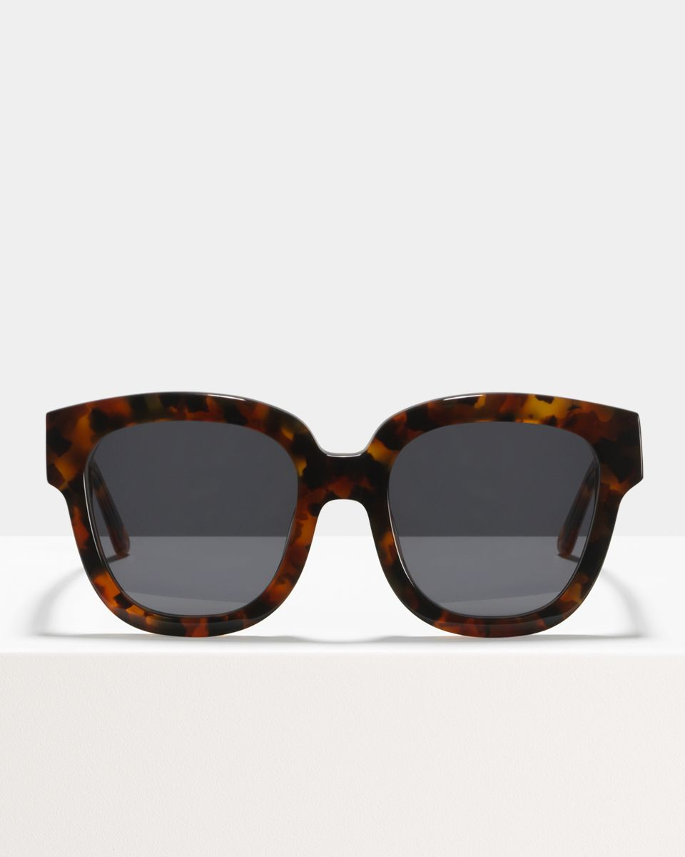 Harper Small acetate glasses in Coyote by Ace & Tate