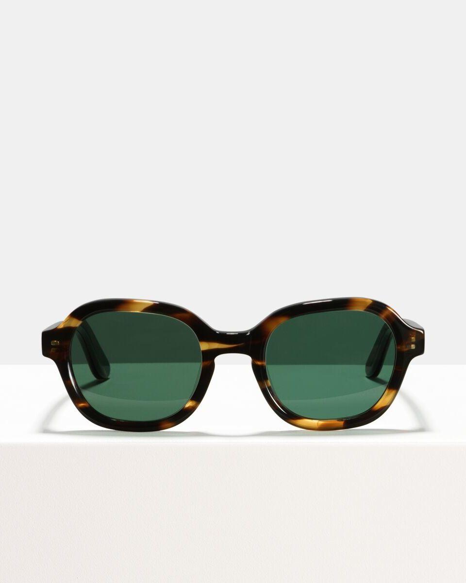 Ace & Tate Sunglasses | carrée acétate in Marron, Orange