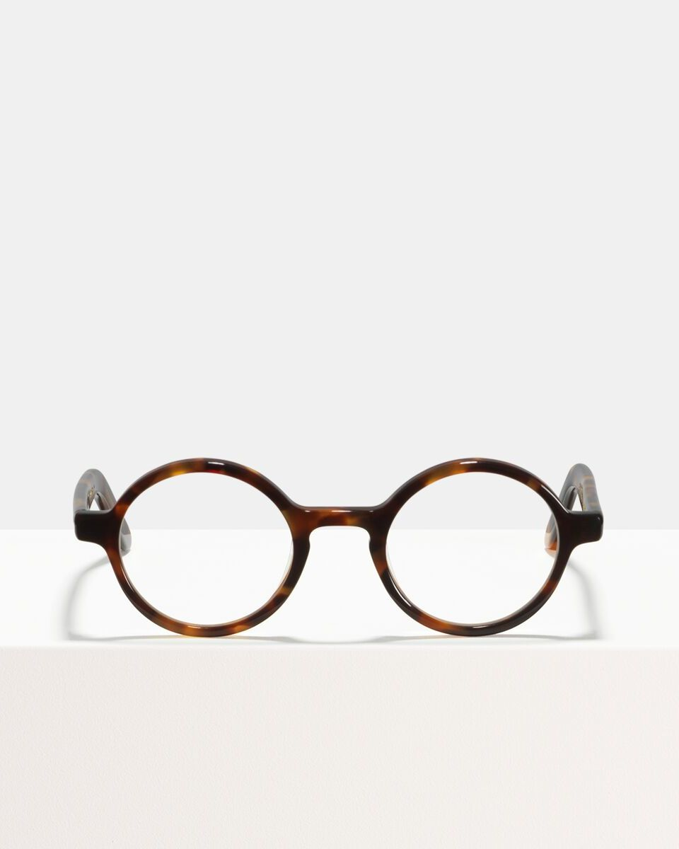Ace & Tate Glasses | round acetate in Yellow, Brown, Orange